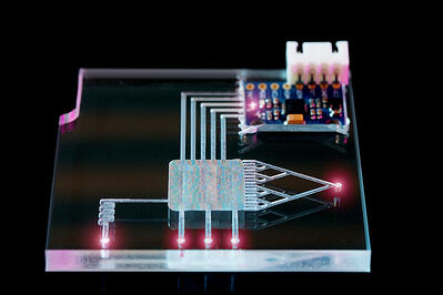 pdms-lab-on-a-chip