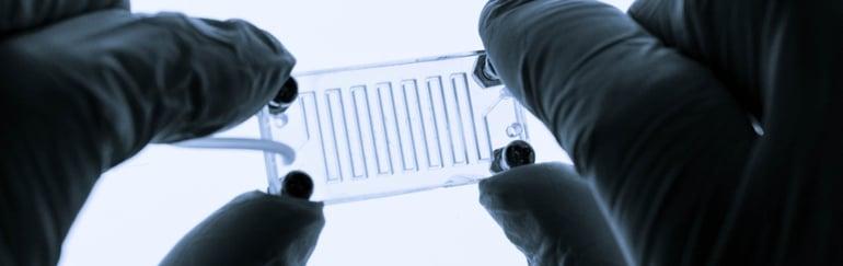 organ-on-chip-lab
