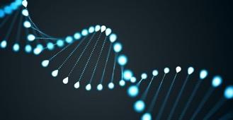 DNA-helix-3