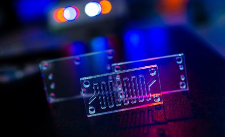 PDMS_Bonding_&_Microfluidics